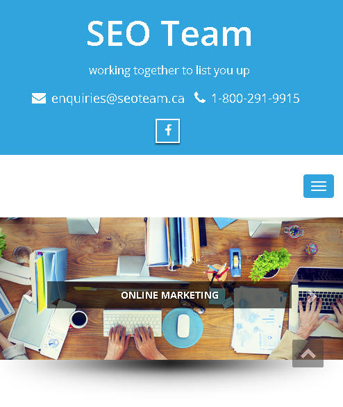 SEO Team (SEO And Website Designing Services)