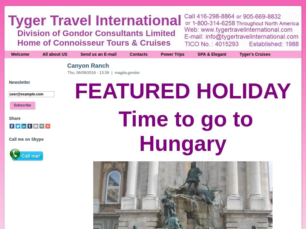 Tyger Travel International