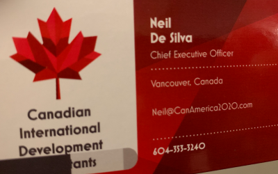 CANADIAN INTERNATIONAL DEVELOPMENT CONSULTANTS