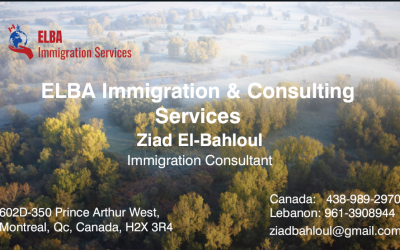 ELBA Immigration and Consulting Services