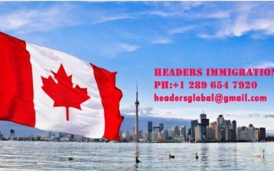 Headers Immigration   International Academy